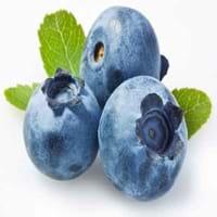 Blueberry Fruit
