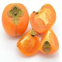 Japanese Persimmon Fruit