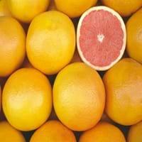 Pink Grapefruit Fruit