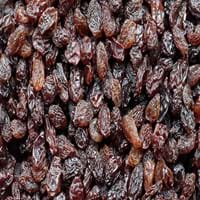 Raisin Fruit